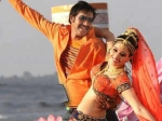 Himmatwala 3 Days 1st Weekend Collection Box Office