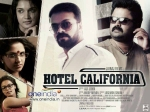 Hotel California Movie Review