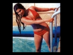 Bollywood Actress Dimple Sharmila Zeenat Bikini Pics