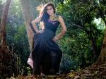Surja Bala Hijam Romance Dulquar Salman Npcb