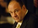 James Gandolfini Death Shock Hollywood Stars