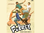 Ali Hints Fukrey Sequel