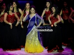 Madhuri Dixit Disappointment Iifa 2013 Press Meet