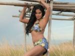 Acid Silk Sakkath Hot Veena Malik