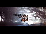 Neelakasham Pachakadal Chuvanna Bhoomi Movie Review