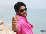 Naga Chaitanya Star Googly Remake