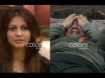 Salman Khan Bigg Boss 7 Hazel Gauhar Armaan Gauhar Tanisha Kushal