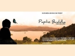 Papilio Buddha Bags Two Awards Ohakka Film Festival