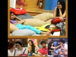 Bigg Boss 7 Pair Up Or Get Out Of House Kushal Gauhar Tanisha Armaan