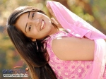 Nikitha Thukral Paired Opposite Duniya Vijay In Ring Road Shubha