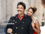 Nagarjuna Bhai Release Record Number Theatres