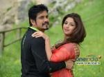 Nagarjuna Bhai 3 Days First Weekend Box Office