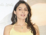 Andrea Jeremiah Special Anthem Ciff