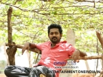 Asif Ali Fourteenth Son Mosayile Kuthira Meenukal Movie