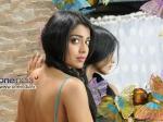 Shriya Saran Romance Sasikumar