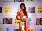 Zee Cine Awards 2014 Priyanka Chopra International Icon Award Female