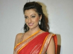 Rudhramadevi Shoot Was Physically Taxing Hamsa Nandini