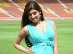 Pranitha Replaces Amy In Suryas Mass