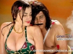 Photos Anna Revealing Outfit Pooja Gandhi Thipajji Circle Item Song 136161 Pg