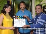 Gopichand Rakul Preet Singh New Film Launch Pictures 136399 Pg