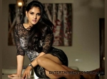 Photos Sandalwood Babes Kannada Actresses In Mini Skirts 138730 Pg