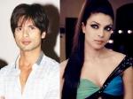 Did Shahid Kapoor Rebuke Priyanka Chopra At Iifa