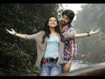 Get Set Rocking Star Yash Gajakesari Release Week Amoolya