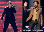 Would Love To Work With Shah Rukh Pitbull