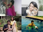 Tollywood Stars With Their Pet Dogs Photos 153477 Pg