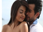 Hate Story 2 Three Days Firs Weekend Collection At Box Office