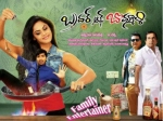 Brother Of Bommali Special Screening For Kona Venkat