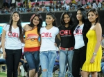 Celebrity Cricket League To Start On January