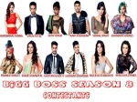 Bigg Boss 8 Payment Amount Revealed Natasa Least Karishma Highest Paid