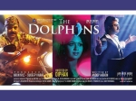 The Dolphins Movie Review