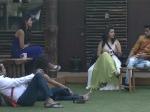 Shocker Karishma Tanna Asked Rahul Mahajan Perfume Says Dimpy Bigg Boss