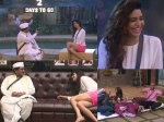 Lol Bigg Boss 8s Karishma Tanna Upen Patel Future Revealed Photos