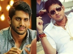 Dochay Inpsired From Dookudu