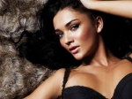 Amy Jackson Overthrows Shruti Haasan Defeats Nayantara Tamannaah And Samantha