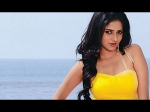 Kannada Heroines Are Not Given Importance Rachita Ram