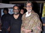 Unfair Action Against Amitabh Bachchan Madhuri Dixit And Preity Zinta