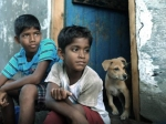 Kaaka Muttai Review Press Show Critics Call It A Rare Gem