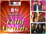 th Indian Telly Awards Nomination Party Swaragini Namish Tejaswi Yhm Karan Attend