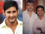 Ar Murugadoss Next Film Thala Ajith S Loss Is Mahesh Babu S Gain