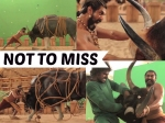 Ever Wondered How Rana Daggubati Fought The Bull In Baahubali