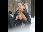 Jennifer Lawrence And Pet Dog Pippi Spotted Again Cute Pics