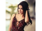 Kriti Kharbanda To Play Glam Role In Maasthi Gudi Duniya Vijay Next