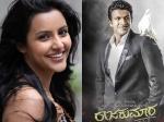 Priya Anand To Pair Up Opposite Puneeth Rajkumar In Rajakumara