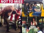 Rana Daggubati Akhil Akkineni Rakul Preet Singh Clicked Doing Odd Jobs