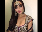 Amy Jackson Spotted At Lavish Wedding Latest Pictures Looks Royal
