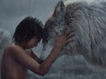 Jungle Book Movie Running Strong In The Box Office